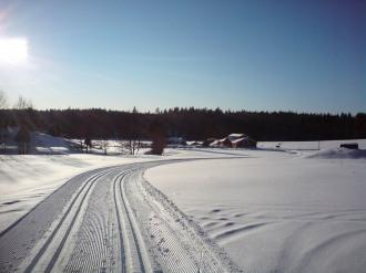 Vinter + skidspår